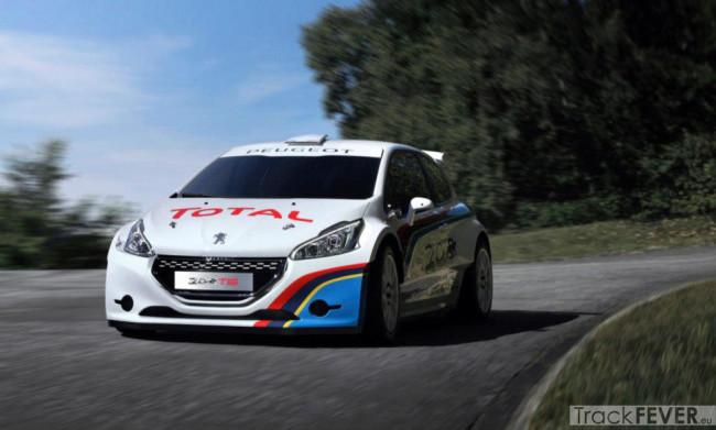 Peugeot-208-T16-5