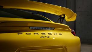 Porsche Cayman GT4 13